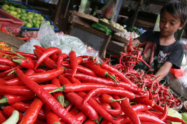 Penjualan cabai di pasar tradisional. Pemerintah canangkan gerakan tanam cabai di pekarangan - Bisnis