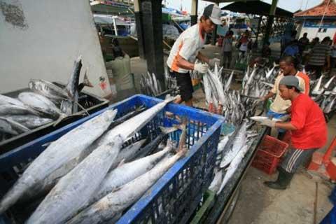 Investasi di sektor perikanan selama 2013 sebesar Rp2,6 triliun. Tahun 2014 bisa Rp3 triliun.  - bisnis.com