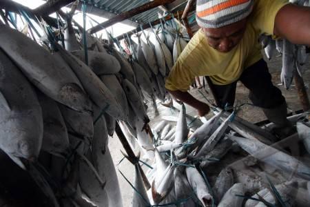 Nelayan dengan ikan hasil tangkapannya  - bisnis.com