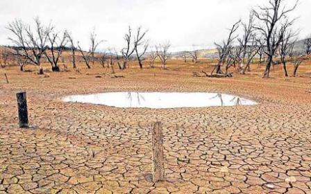 Ilustrasi-Kekeringan di Danau Eucumbene, 150 km Selatan Ibu Kota Australian, Canberra, tahun 2009. - Reuters