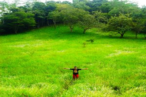 Tahun ini Kementan mendapatkan alokasi dana Rp15 miliar untuk membuka tiga padang rumput.  - bimbian.orgng