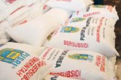 Kebutuhan pupuk untuk 1 hektar sawah yakni 300 kg untuk sekali pemakaian. - bisnis.com