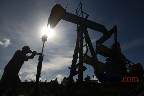 Kemudian dari sisi lapangan usaha, sumber perlambatan berasal dari kontraksinya sektor pertambangan Riau khususnya pertambangan migas.  - Bisnis.com