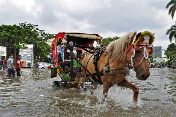Seekor delman melintasi banjir di Kedoya, Jakarta Barat, Senin (21/2). Badan Nasional Penanggulangan Bencana (BNPB) menyebutkan bahwa ada 54 titik banjir yang tersebar di wilayah Jakarta dengan ketinggian bervariasi. ANTARA FOTO - Atika Fauziyyah