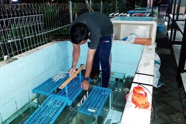 Anggota Tim PKM-PE Unair sedang melaksanakan percobaan dan pengujian karya yang dibuatnya. - Bisnis/Istimewa