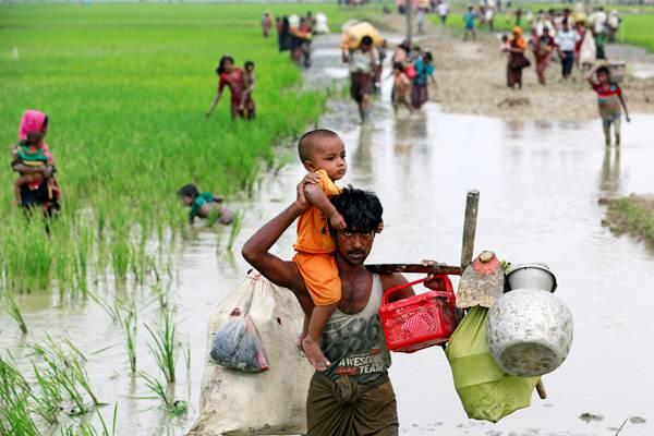 Pengungsi Rohingya melintasi sawah, setelah berhasil menyeberangi perbatasan Bangladesh-Myanmar, di Teknaf, Bangladesh, Rabu (6/9). - REUTERS/Danish Siddiqui