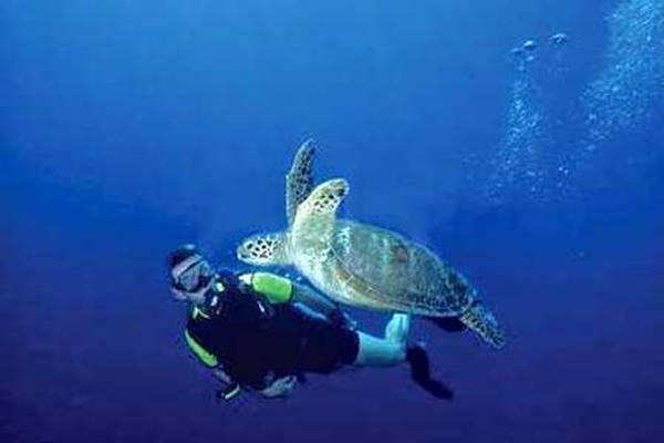 Pesona Maluku. - .Indonesia Travel