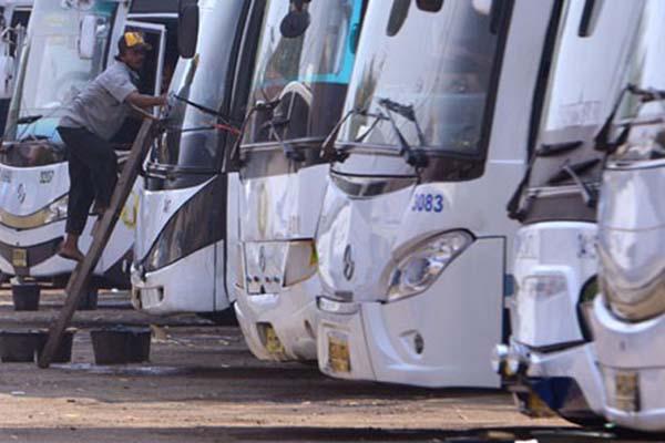 Deretan bus Damri di Pool Kemayoran, Jakarta. Damri akan mengoperasikan bus premium rute Bogor-Jakarta - Antara/Fanny Octavianus