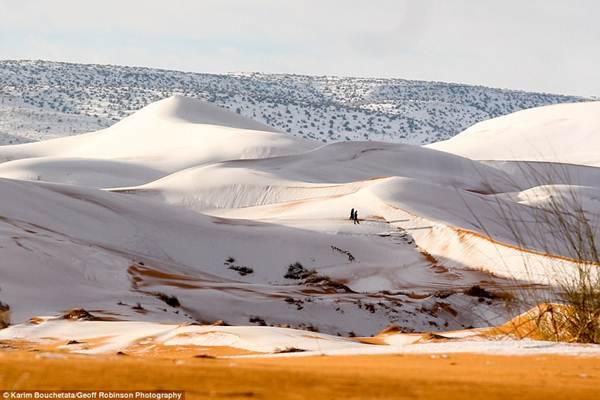 Salju seliuti Gurun Sahara - Dailymail
