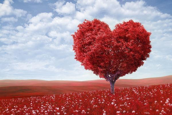 Ilustrasi kasih sayang - Istimewa