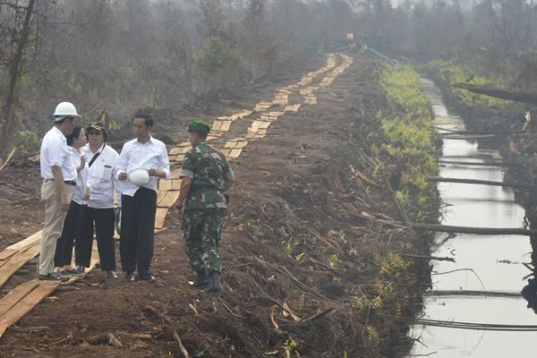 Presiden Joko Widodo (kedua kanan) berbincang dengan Menko Polhukam Luhut Panjaitan (kiri), Menko PMK Puan Maharani (kedua kiri) Menteri LHK Siti Nurbaya (tengah) dan Direktur Direktorat Zeni Angkatan Darat Brigjen TNI Irwan (kanan) usai menyusuri pematang sekat kanal yang dibangun untuk mencegah terjadinya kebakaran lahan gambut di Pulang Pisau, Kalteng, Sabtu (31/10). - Antara