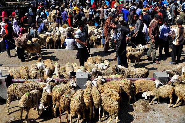 Pedagang dan pembeli kambing bertransaksi di pasar hewan. - Antara/Anis Efizudin