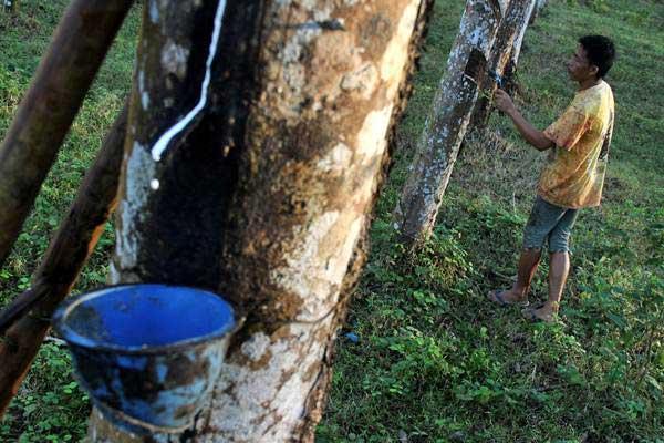 Petani menoreh pohon karet di kawasan perkebunan kebun karet Jawi jawi, Kabupaten Bulukumba, Sulawesi Selatan, Rabu (5/7). - ANTARA/Abriawan Abhe