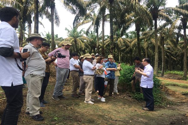 Managing Director Asian Agri Group, Kelvin Tio sedang memberikan pemaparan pengelolaan kebun kelapa sawit kepada para delegasi negara-negara Uni Eropa di Tungkal Ulu, Jambi (17/4). - Bisnis/Thomas Mola