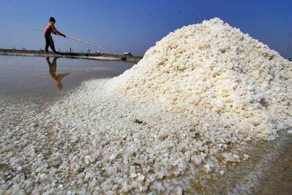Petani memanen garam di Desa Santing, Losarang, Indramayu, Jawa Barat, Senin (31/7). - ANTARA/Dedhez Anggara