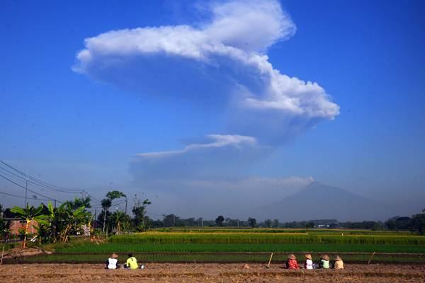 Sejumlah petani melihat kepulan asap letusan freatik Gunung Merapi di Sawit, Boyolali, Jawa Tengah, Jumat (11/5/2018). - ANTARA/Aloysius Jarot Nugroho