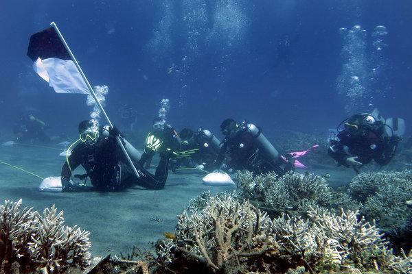 Sejumlah penyelam mengibarkan bendera Merah Putih dari kedalaman 15 meter di Pantai Malalayang, Manado, Sulawesi Utara, Jumat (17/8). Manado dikenal memiliki destinasi bahari yang menarik. - Antara/Adwit B Pramono