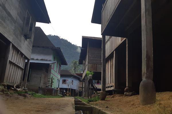 Desa Air Liki Lama, Merangin, Jambi./JIBI/BISNIS - Jaffry Prabu Prakoso
