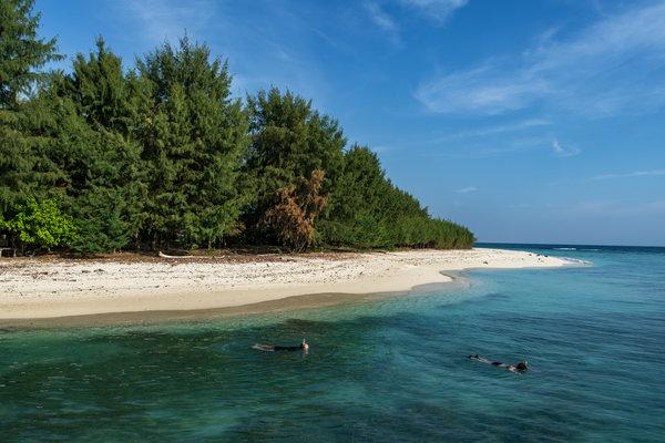 Wisatawan melakukan aktivitas selam permukaan di sekitar Pulau Cilik, Karimunjawa, Jepara, Jawa Tengah, Sabtu (4/8). - Antara/Aji Styawan