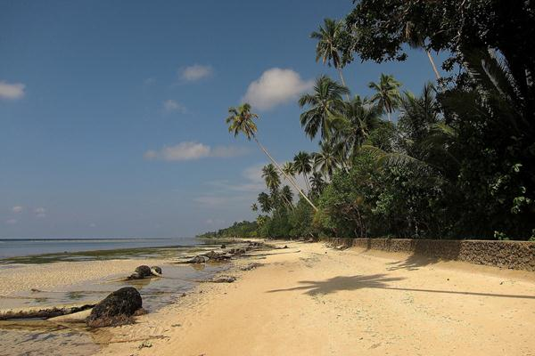 Biak di Papua - Istimewa