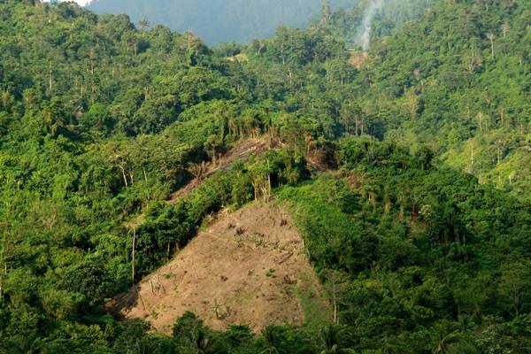 Kondisi sebagian kawasan hutan yang rusak di sekitar pegunungan Kalukku, Mamuju, Sulawesi Barat, Rabu (25/10). - ANTARA/Akbar Tado