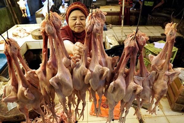 Pedagang menata daging ayam di lapaknya di Pasar Kosambi Bandung, Jawa Barat, Selasa (16/1). - JIBI/Rachman