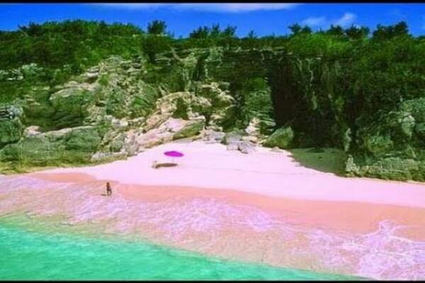 Pantai Pink di NTT - Youtube