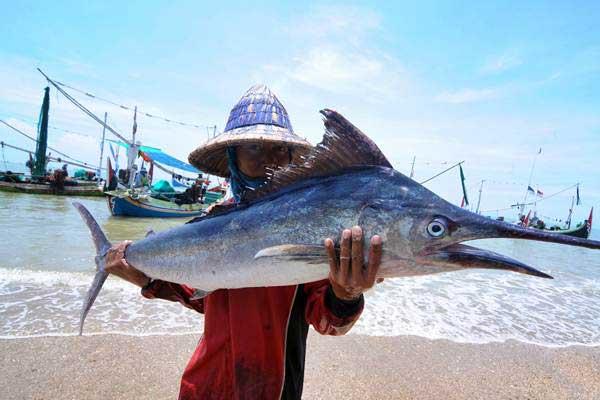 Nelayan mengangkat ikan layar tangkapannya di Pantai Jumiang, Pamekasan, Jawa Timur, Rabu (7/11/2018). - ANTARA/Saiful Bahri