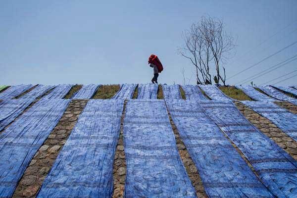 Pekerja menjemur kain pantai usai dilakukan pewarnaan, di kawasan industri rumahan, Krajan, Mojolaban, Sukoharjo, Jawa Tengah, Selasa (22/8). - ANTARA/Mohammad Ayudha