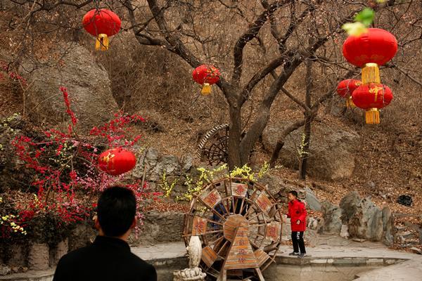 Seorang pria melihat seorang anak laki-laki bermain di taman Badachu saat perayaan Festival Musim Semi menandai Tahun Baru Imlek di Beijing. - Reuters