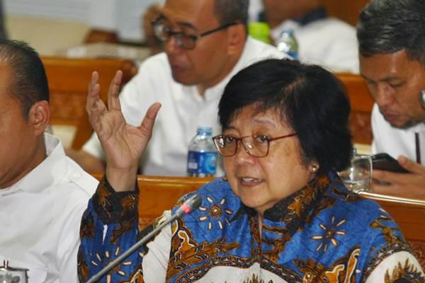 Menteri Lingkungan Hidup dan Kehutanan Siti Nurbaya (kanan) menghadiri rapat kerja dengan Komisi VII DPR di Gedung Parlemen Senayan, Jakarta, Kamis (17/1/2019). - ANTARA FOTO/Muhammad Iqbal