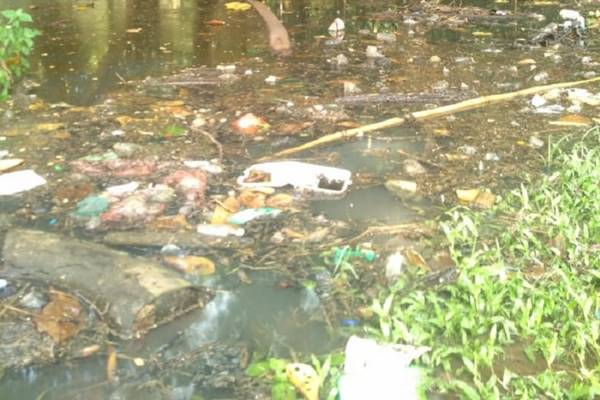 Kondisi aliran air di Bumi Perkemahan dan Graha Wisata (Buperta) Pramuka Cibubur, Jakarta Timur, Kamis (7/2/2019). - Dok. Buperta Cibubur