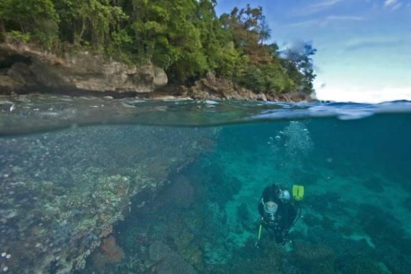 Ada 22 lokasi menyelam di Banda Neira. - Istimewa