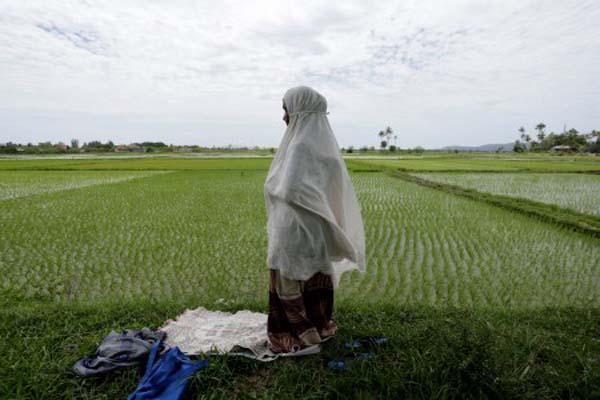 Seorang petani menunaikan ibadah salat di tengah sawah. - Antara/Irwansyah Putra