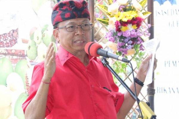 Gubernur Bali Wayan Koster. - Antara