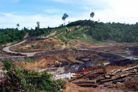 Dampak lingkungan di areal pertambangan - Antara