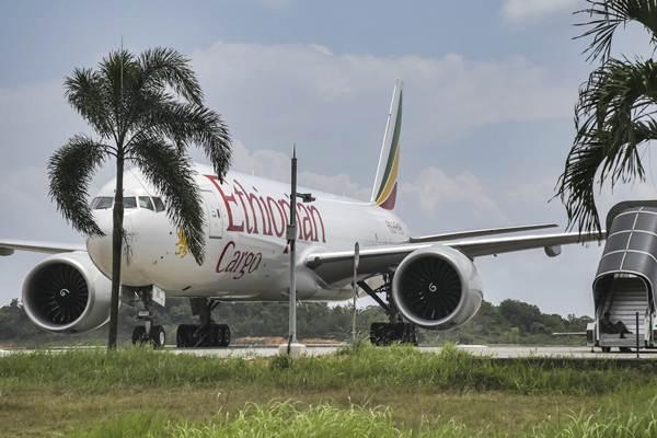 Ilustrasi: Pesawat kargo Ethiopian Airlines yang diturunkan secara paksa oleh TNI AU, parkir di Bandara Hang Nadim, Batam, Kepulauan Riau, Senin (14/1/2019). - ANTARA/M N Kanwa