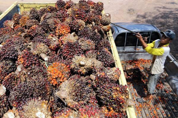 Seorang pekerja memuat bongkahan kelapa sawit ke atas mobil truk di pinggir jalan raya Palembang-Prabumulih, Sumsel - Antara