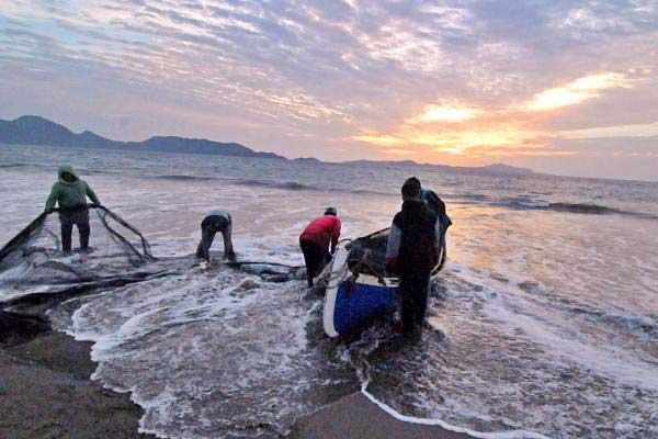 Nelayan tradisional membersihkan sampah dan lumpur yang menempel pada pukat tarik atau pukat darat di perairan pantai Kampung Jawa, Banda Aceh, Selasa (18/7). - ANTARA/Ampelsa