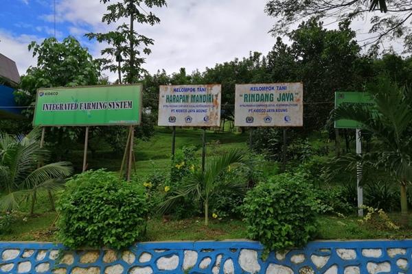 PT Kideco Jaya Agung (Kideco), anak perusahaan energi terintegrasi PT Indika Energy Tbk. (INDY), membangun sistem pertanian terpadu (integrated farming system - IFS) di Desa Samurangau, Kabupaten Paser. IFS ini sebagai bagian dari program program pengembangan dan pemberdayaan masyarakat. JIBI