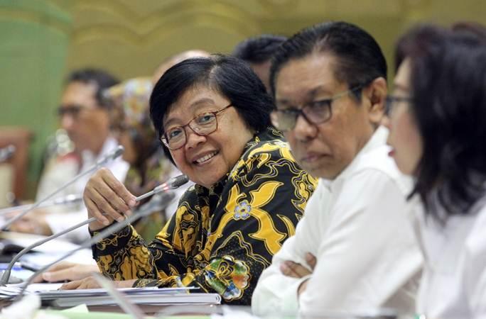 Menteri Lingkungan Hidup dan Kehutanan (LHK) Siti Nurbaya Bakar memberikan penjelasan saat rapat kerja dengan Komisi VII Dewan Perwakilan Rakyat di Jakarta, Rabu (15/5/2019). - Bisnis/Dedi Gunawan
