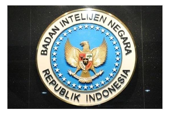 Badan Intelijen Negara (BIN). - Istimewa