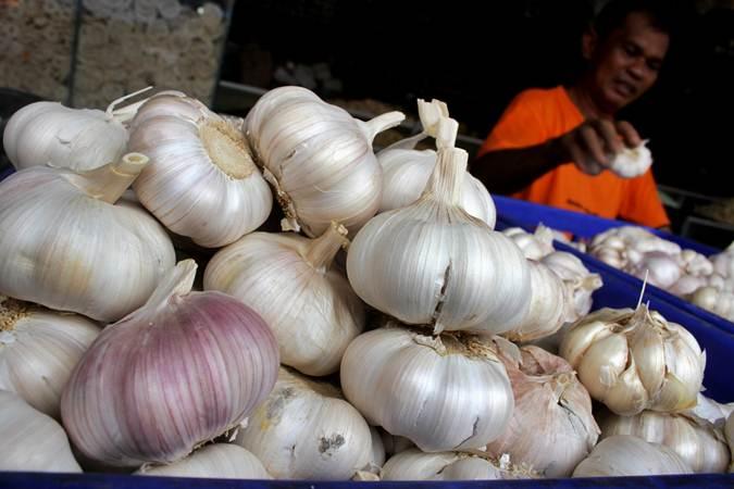 Pedagang membersihkan bawang putih di salah satu pasar tradisional di Makassar, Sulawesi Selatan, Kamis (2/5/2019). - ANTARA/Arnas Padda