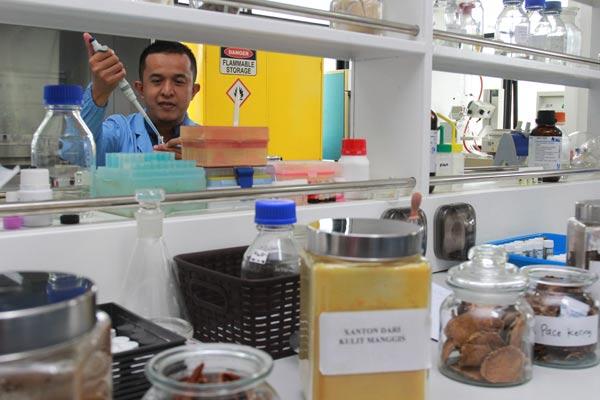 Peneliti dari Lembaga Pengetahuan Indonesia (LIPI) membuat obat tradisional dari berbagai jenis tumbuhan dan buah-buahan di Laboratorium khusus Pembuatan Obat Tradisional di Puspiptek Serpong, Tangerang Selatan, Selasa (30/4/2019). Dengan Laboratorium itu, peneliti LIPI telah berhasil menciptakan dan mengembangkan obat-obat tradisional dari berbagai jenis tumbuhan dan buah-buahan yang tadinya obat pahit menjadi obat manis untuk diminum tanpa mengurangi khasiat serta tanpa menggunakan bahan pengawet.  - ANTARA