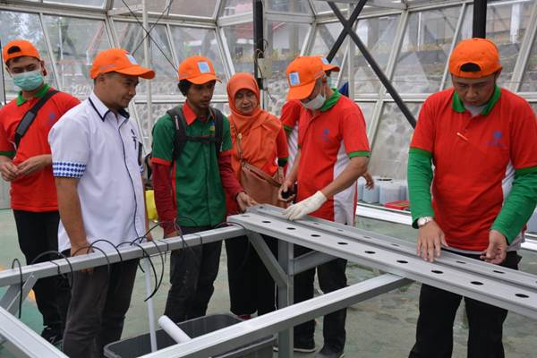 BLK Lembang terapkan otomatisasi pertanian hidroponik berbasis IoT - Istimewa