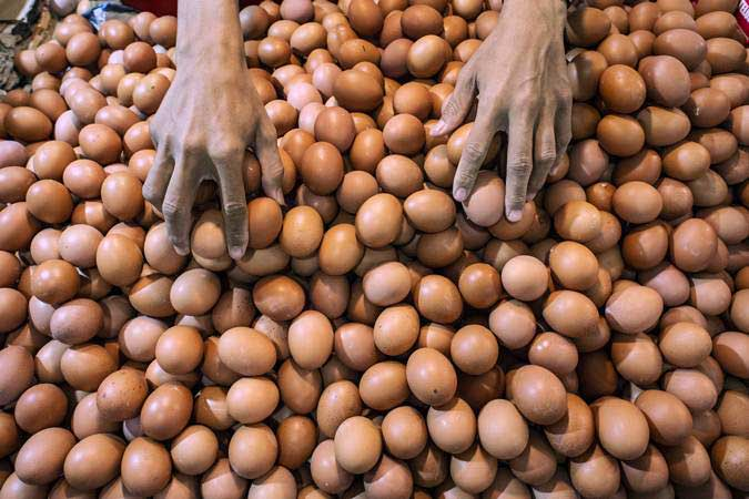 Pedagang merapikan telur. Stok berbagai kebutuhan pokok di Kota Ternate mencukupi hingga Lebaran. - ANTARA/Aprillio Akbar
