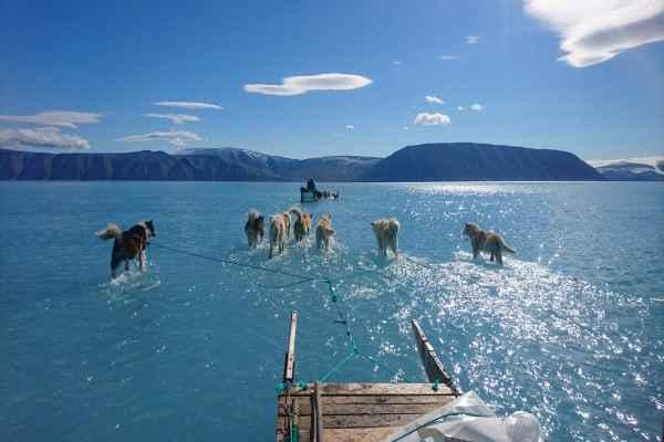 Foto yang diambil Steffen Olsen menunjukkan lapisan es di Greenland yang digenangi air akibat pencairan es yang tak lazim - Twitter