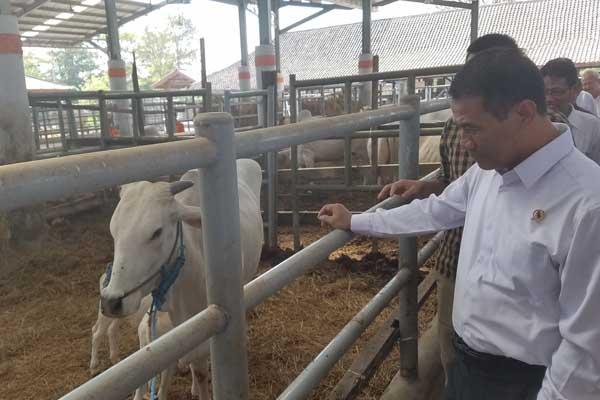 Mentan Andi Amran Sulaiman di di Loka Penelitian Sapi Potong, Grati, Pasuruan, Jumat (28/6/2019) - Choirul Anam