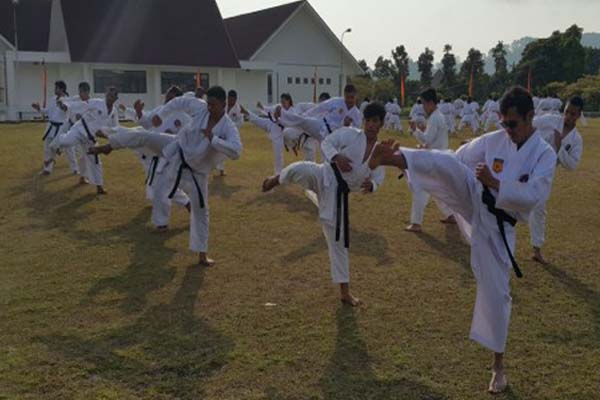 Ilustrasi - Karateka sedang berlatih - Bisnis/Antara
