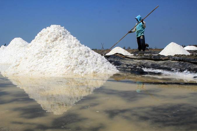 Petambak memanen garam di desa Tanjakan, Krangkeng, Indramayu, Jawa Barat. - ANTARA/Dedhez Anggara